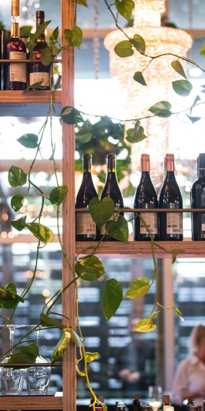 orchard-back-bar-calgary